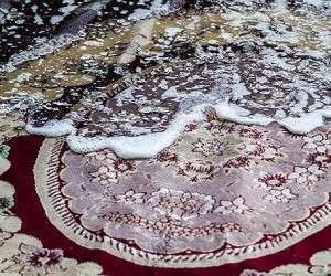 شستشوی-فرش (2)