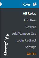 مدیریت نقش های کاربری در وردپرس _ افزونه WPFront User Role Editor